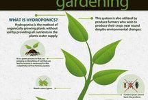 Gardening tips / by Lucy M. Garcia