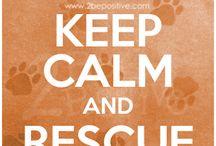 Rescue <3