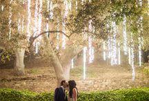 Wedding I dream of