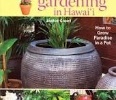 Hawaii Gardening / by Amanda Dudley