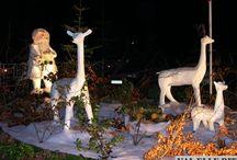 Noël au Terroir de Caux / Marchés de noël, illuminations, animations, patinoire: la féerie de Noël s'installe au Terroir de Caux