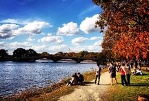 Charles River- Day & Night / The beautiful river that runs through the Boston area and Back Bay!