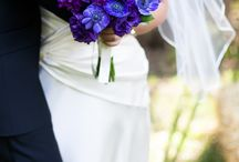 purple and  blue/coral wedding