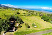 Maui Properties For Sale