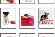 Preschool Ideas:  Valentine's Day