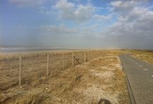 Beach / About beach, sand, sun, wind and horizons