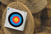 Archery, Weapons, and Self-defense / by Alexandra Green