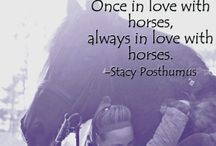 A Equestrian♡ / by Kristin Galante