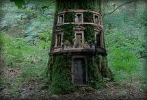 Tree Houses / I am OBSESSED w/Tree Houses! I want to build one for my grandson! / by Kelly Norelius