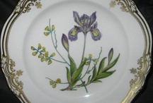 Spode China / by Classic Replacements