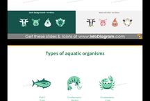 Food and Agriculture icons and infographics: Animals, Crop Cultivation, Forestry (flat PPT art) / Flat Food and Agriculture Icons for infographics and presentations of Animal Husbandry, Fishery, Crop Cultivation, Forestry and Wood Industry.