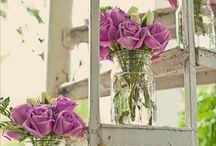 juste pour le plaisir des yeux… / fleurs