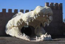 Crocoparc d'Agadir