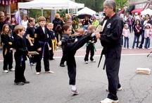 Demo Team / #demoteam / by Maplewood Karate