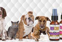 Healthy Pets / #Animals #Pets #Health #Dog #Cat #Supplements