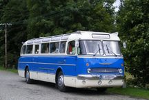 Busse , LKW/ Buses and Trucks