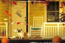 Cozy-mysteries-unlimited / Amazing gracie A Dog's Tale  / by Donna Ewing