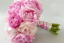 Wedding - Bridal Bouquet & Floral Arrangements