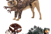 Animal Ideas / by Nicole Taylor Reed