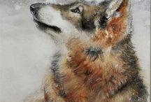 wolfbild