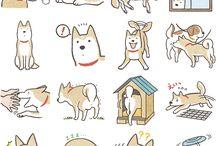 Shiba-Inu / Shiba-Inu dogs