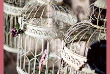 Bird cages / by Lottariina Hämäläinen