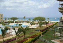 Vacation Aruba / If you are looking for an upscale, private and relaxing condo with spectacular ocean view and just a few steps from the beach, but still close to all main activities and with all the benefits from adjoining hotels and resorts; look no further! We have wonderful and luxurious condos of all sizes and at reasonable seasonal rates.  Weekly rates are already discounted by about 10%, so take advantage of the lower nightly rates by staying a week or more!