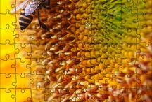 Puzzles rompecabezas / Rompecabezas