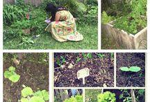 Garden / Home grown tastes best