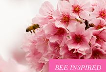 FEAR NOT-JUST BEE The Amazing One / Fear has no place in our hearts when we are present in our lives.