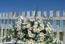Cemetary flowers / by dorothy anderson