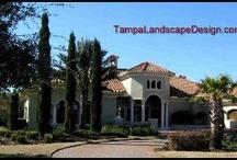 Tampa Mediterranean Landscape