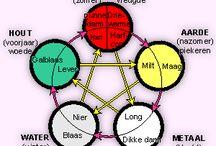 5 elementen vitaliteit / Water - hout - vuur - aarde - metaal. Informatie over nine star ki, 5 elementen volgens TCM, voeding volgens de 5 elementen, Feng shui ed