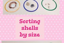 sorting shells by size
