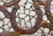 Workshop Ameland / Leer fotograferen op Ameland