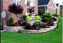 Landscape side yard