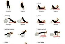 workouts / fitness and gym exercises