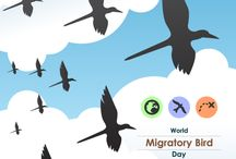 International Migratory Bird Day / In 2006, the United Nations established World Migratory Bird Day to be held on the second weekend of May every year. The event was founded as an effort of the UN's Agreement on the Conservation of African-Eurasian Migratory Waterbirds to raise awareness of the migratory linkages between regions of the globe. World Migratory Bird Day events have been held in 118 nations. Each year, the United Nations announces a uniting theme for official events.
