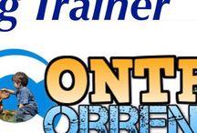 Word in Bau Dog trainer / Gestione Urbana - comportamenti anormali