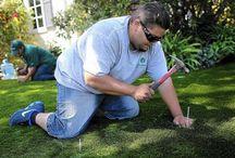 Gardening: artificial turf / Gardening in California