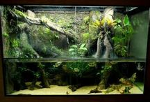 river tank