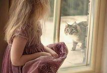 Állatok! Macska!