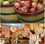 Growing Family Memories   Eckert's Farms / Ideas for some family fun and kids activities from family-owned and operated Eckert's Country Store and Farms.