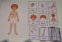 schema corporel