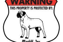 Mastiff Signs and Stuff / Dog signs for Mastiff and other dog stuff. http://www.signswithanattitude.com/dog_signs/mastiff.html