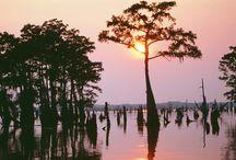 Louisiana Travels / by Louisiana Life Magazine