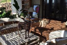 Terrace / #Home #Decor #SanMiguelDeAllende #Mexico