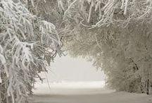 winter / зима