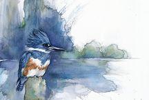 Watercolour paintings, Inspiring
