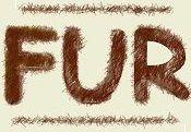 ☣ fur ☣